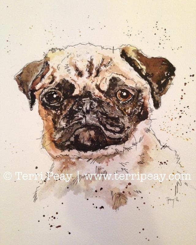 'Pug' By Terri Peay