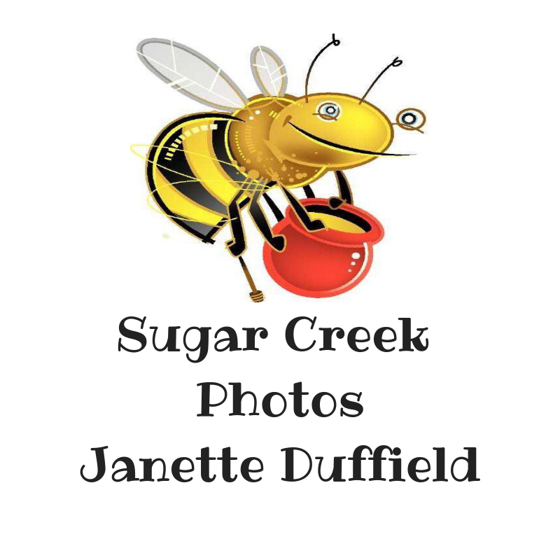 Sugar Creek Photos