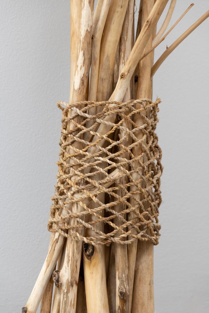 Bones or branches