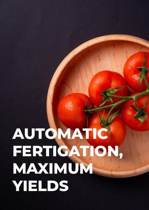 food-security-background.jpg