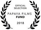 Papaya Films Fund.jpg