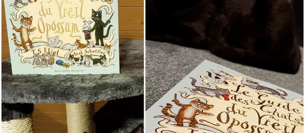 Le Guide des chats du Vieil Opossum #En 3 points