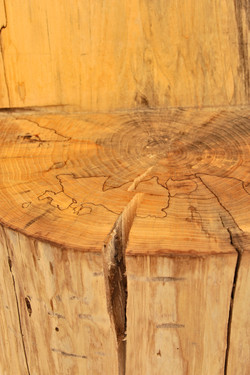 Elm Log Chair (Close up)