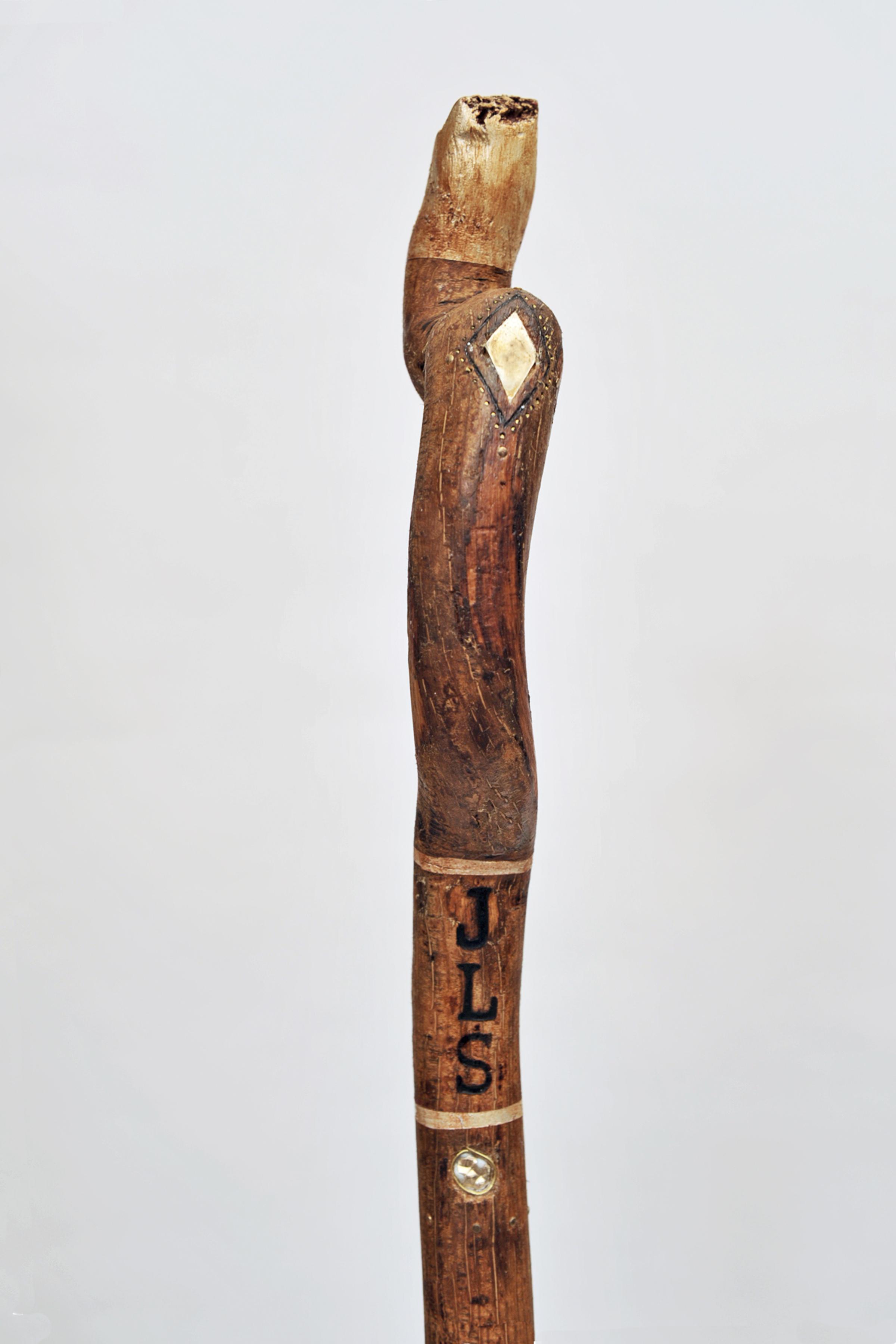 Walking stick (Close up)
