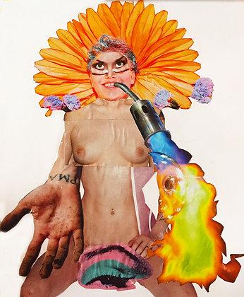 Acid Flower Head