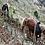 Thumbnail: DOMAINE LOMBARD, Cuvée Brézème, J&E Montagnon