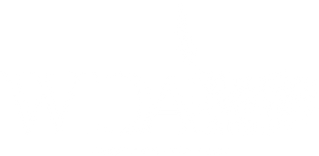WDA - logo - white.png