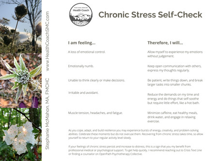 Chronic Stress Self-Check