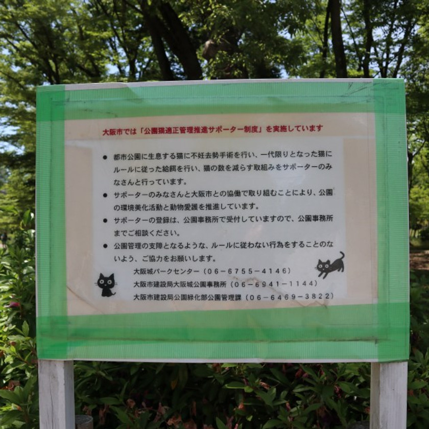 pls don't feed cats. there are too many. thx. – Japan