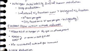 Week 2: Biochem II
