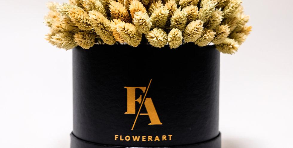 FLOWER BOX SUH  - PHALARIS NATUR