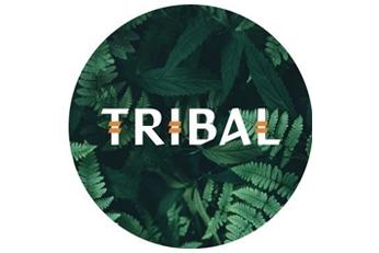 tribal-k9