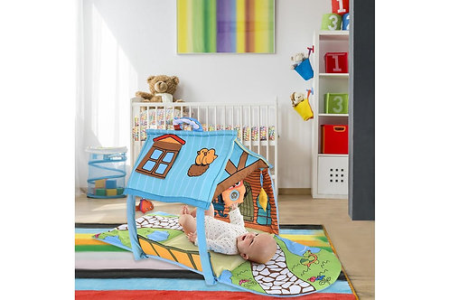 Baby House Activity Gym