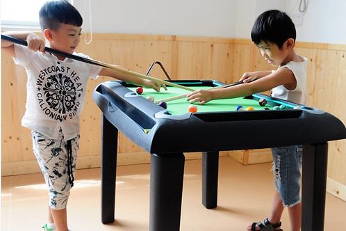 Portable Billiard Table