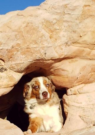 Harper in a Cave