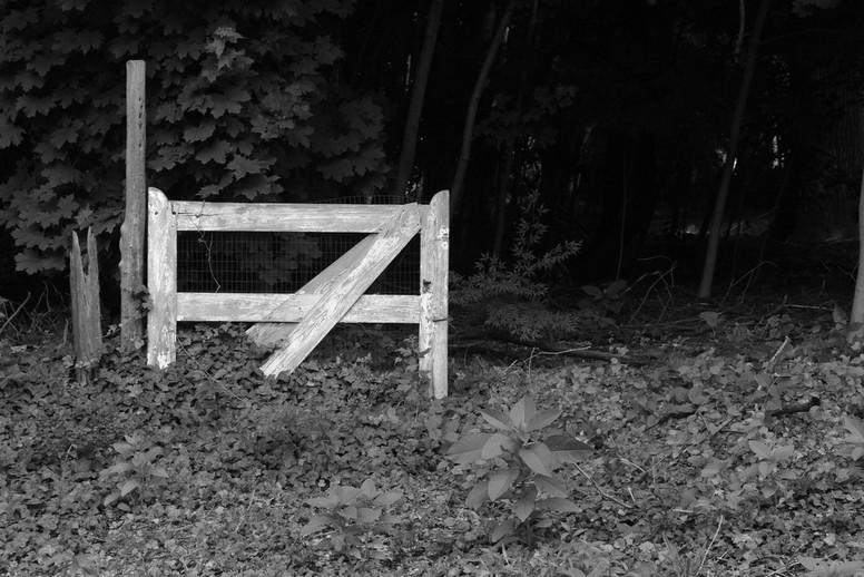 Lone Gate.JPG