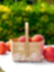 Peach tote 1.jpg