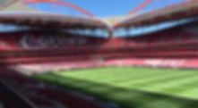 benfica-stadium-and-museum-tour-04.jpg