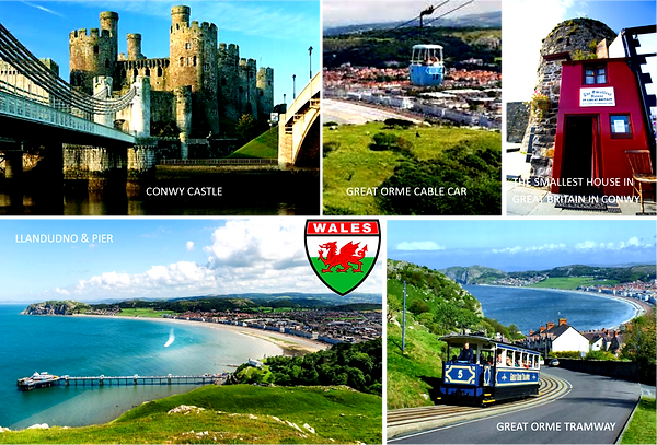 WALES (1).png