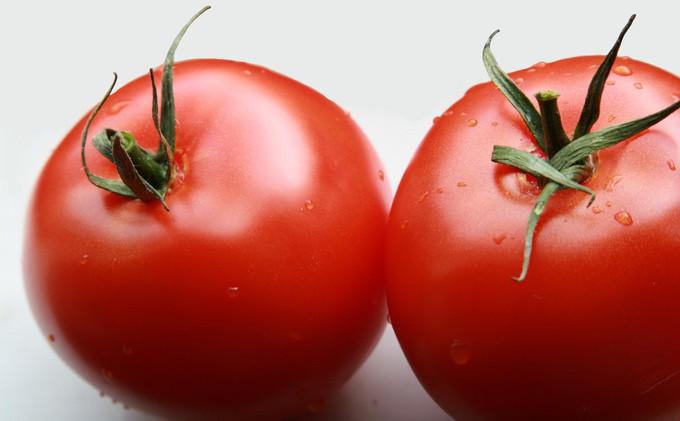 tomato-1322328-1599x1066.jpg