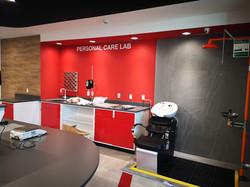 Laboratorios BASF Mexicana