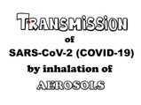 Transmission of SARS-CoV-2 by inhalation of aerosols: how can we lower the risk of infection?