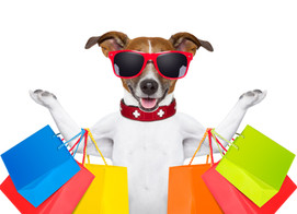 Four PAWS Thrift Shoppe Now Open on Thursdays