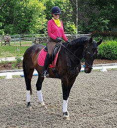 Juniper & Sharon, Eastward, School Horse