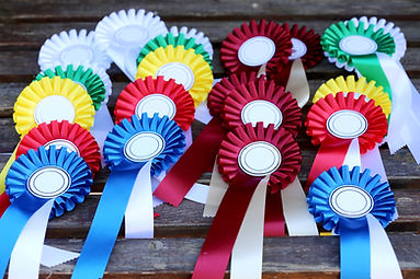 Equestrian ribbons for equestrian schooling shows
