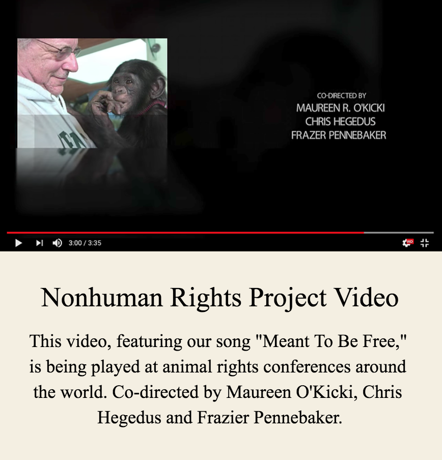 Nonhuman Rights Project Video