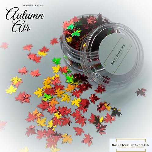 Autumn Air Autumn Leaves