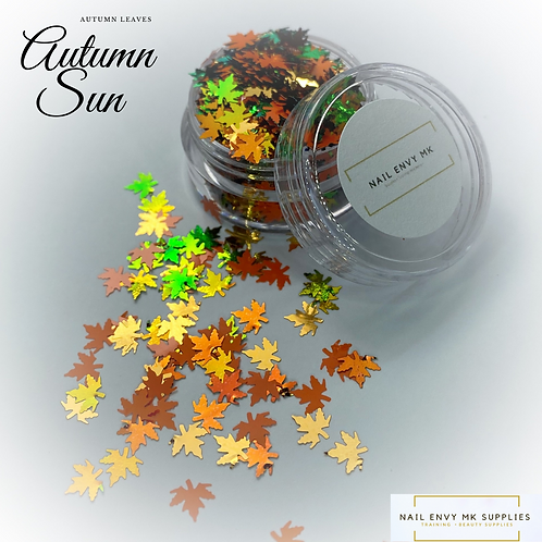 Autumn Sun Leaves