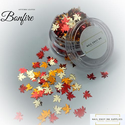 Bonfire Autumn Leaves