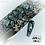 Thumbnail: Foil - Jungle Snake