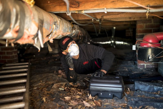 Proper crawlspace inspection is all in a days work for a quality Nelon-Cole technician.