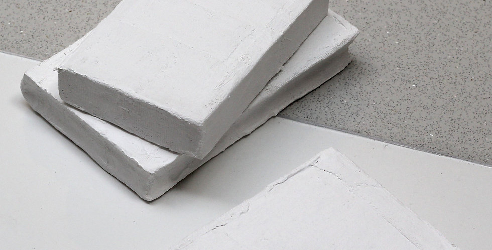 Plaster books