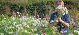 AT18-FLOWERS-Seeds.jpg