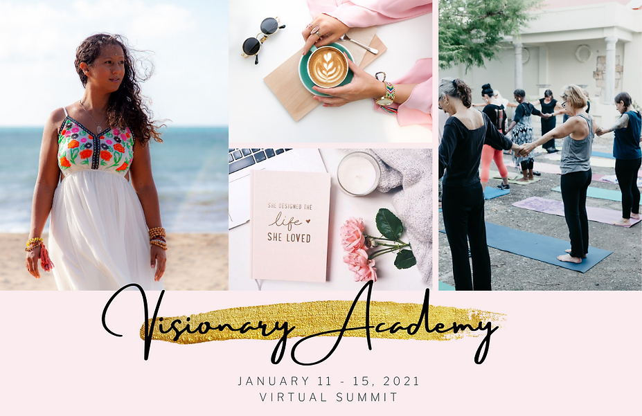 Copy of Visionary Academy.png