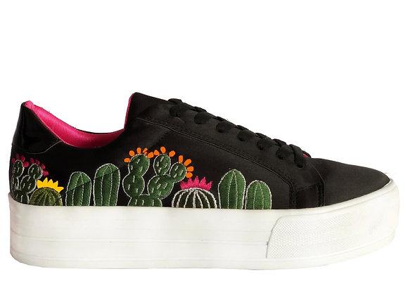 Cactus Platform Lolkina's