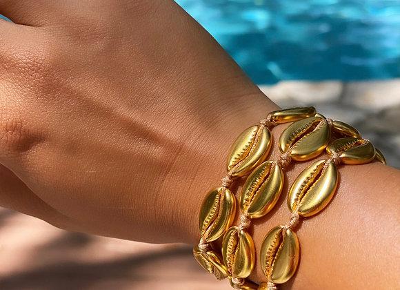 Shell Adjustable Bracelet - 14K F