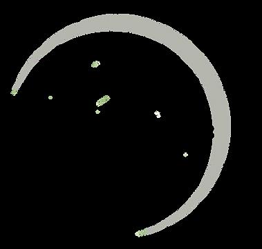 tierspi gris pâle.png