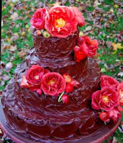 Chocolate Rose