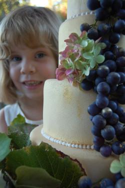 VCS Winery Cake