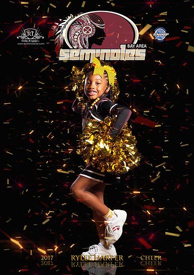 24 x 36 Poster: Confetti