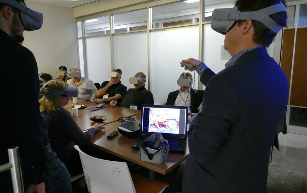 Indepth Anatomy Presentations in 3D