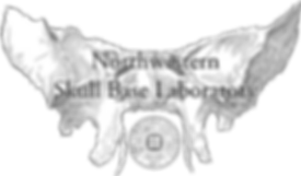SkullbaseLogo (1).png