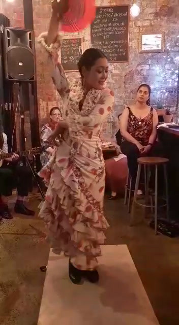 8799bb41-9b98-Flamenco night-195c9fcd91ce.mp4