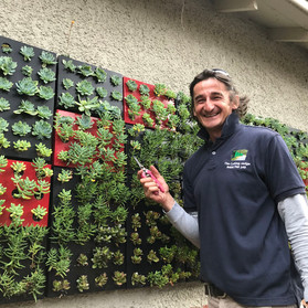 Behind the Dreams: Meet Robert Mihailescu of The Cutting Hedge.