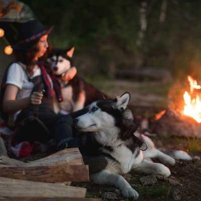 img-Damzelfly-Campfire-dogs-Woman-400x40