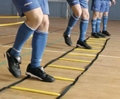 Indoor Speed Agility Ladder